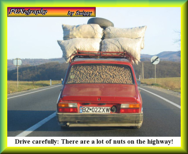 Summer is coming, so will holiday and vacation driving. Be careful out there | Drive carefully: There are a lot of nuts on the highway! | image tagged in driving,memes,punography,bad pun | made w/ Imgflip meme maker