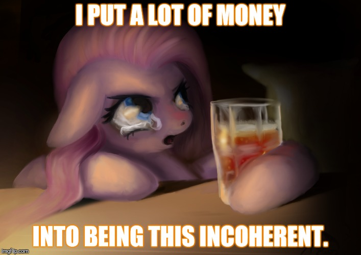 I PUT A LOT OF MONEY INTO BEING THIS INCOHERENT. | made w/ Imgflip meme maker