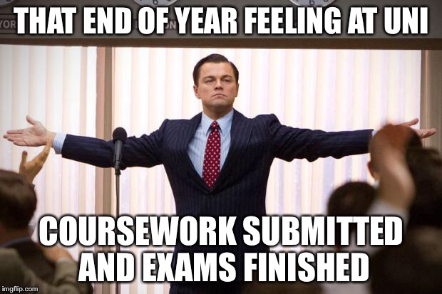 wolf of wallstreet |  THAT END OF YEAR FEELING AT UNI; COURSEWORK SUBMITTED AND EXAMS FINISHED | image tagged in wolf of wallstreet | made w/ Imgflip meme maker