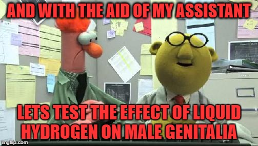 AND WITH THE AID OF MY ASSISTANT LETS TEST THE EFFECT OF LIQUID HYDROGEN ON MALE GENITALIA | image tagged in muppets | made w/ Imgflip meme maker
