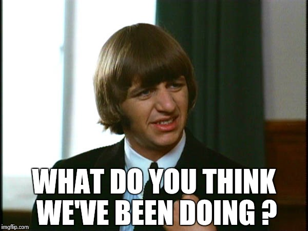 Ringo Starr | WHAT DO YOU THINK WE'VE BEEN DOING ? | image tagged in ringo starr | made w/ Imgflip meme maker