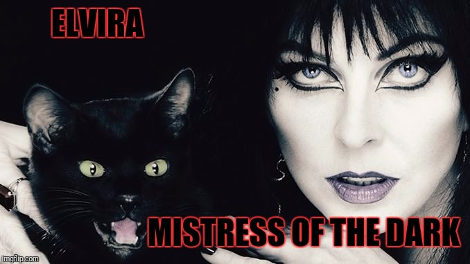ELVIRA MISTRESS OF THE DARK | made w/ Imgflip meme maker