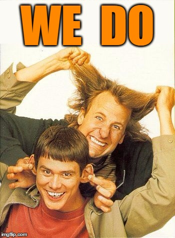 DUMB and dumber | WE  DO | image tagged in dumb and dumber | made w/ Imgflip meme maker