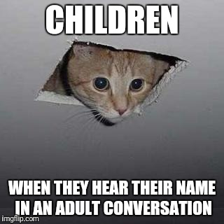 Ceiling Cat | CHILDREN WHEN THEY HEAR THEIR NAME IN AN ADULT CONVERSATION | image tagged in memes,ceiling cat | made w/ Imgflip meme maker