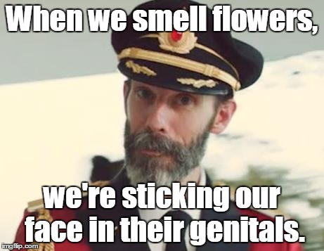 When we smell flowers, we're sticking our face in their genitals. | image tagged in captain obvious strikes again | made w/ Imgflip meme maker