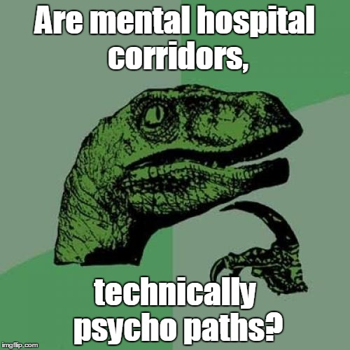 Philosoraptor Meme | Are mental hospital corridors, technically psycho paths? | image tagged in memes,philosoraptor | made w/ Imgflip meme maker