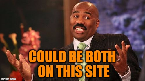 Steve Harvey Meme | COULD BE BOTH ON THIS SITE | image tagged in memes,steve harvey | made w/ Imgflip meme maker