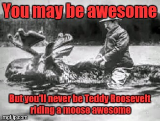 You may be awesome But you'll never be Teddy Roosevelt riding a moose awesome | image tagged in awesome | made w/ Imgflip meme maker