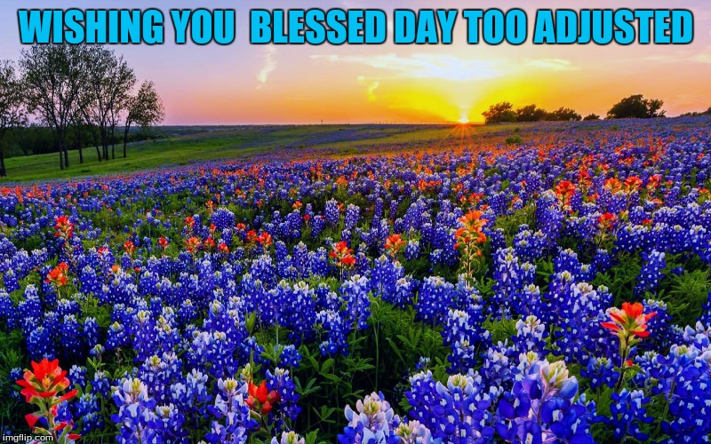 WISHING YOU  BLESSED DAY TOO ADJUSTED | made w/ Imgflip meme maker