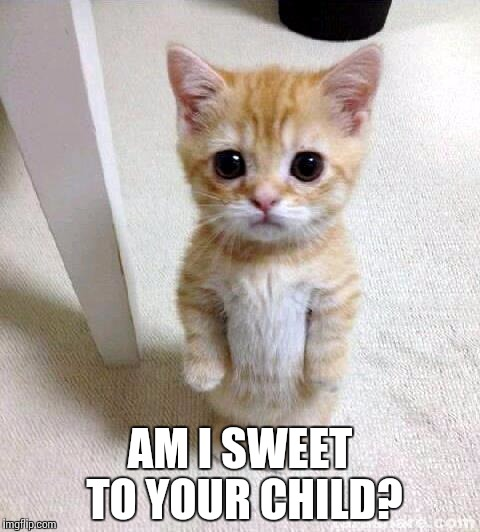 Cute Cat Meme | AM I SWEET TO YOUR CHILD? | image tagged in memes,cute cat | made w/ Imgflip meme maker