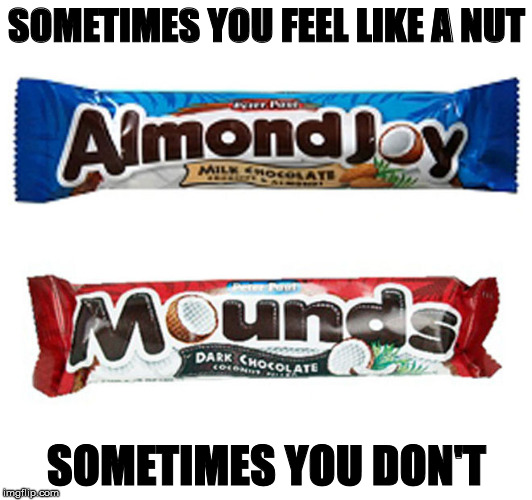 SOMETIMES YOU FEEL LIKE A NUT SOMETIMES YOU DON'T | made w/ Imgflip meme maker