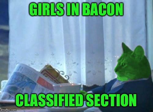 I Should Buy a Boat RayCat | GIRLS IN BACON CLASSIFIED SECTION | image tagged in i should buy a boat raycat | made w/ Imgflip meme maker