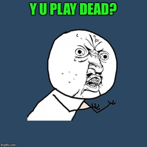 Y U No Meme | Y U PLAY DEAD? | image tagged in memes,y u no | made w/ Imgflip meme maker