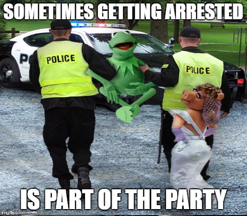 SOMETIMES GETTING ARRESTED IS PART OF THE PARTY | made w/ Imgflip meme maker