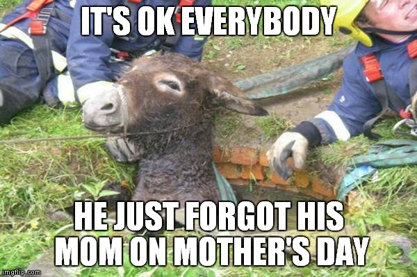 Don't be an A$$hole on Mother's Day | IT'S OK EVERYBODY HE JUST FORGOT HIS MOM ON MOTHER'S DAY | image tagged in asshole,mothers day | made w/ Imgflip meme maker