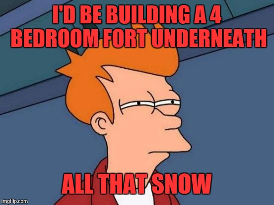 Futurama Fry Meme | I'D BE BUILDING A 4 BEDROOM FORT UNDERNEATH ALL THAT SNOW | image tagged in memes,futurama fry | made w/ Imgflip meme maker
