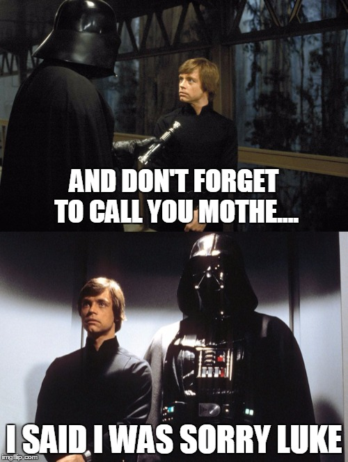 That moment that you didn't think before speaking | AND DON'T FORGET TO CALL YOU MOTHE.... I SAID I WAS SORRY LUKE | image tagged in star wars,darth vader | made w/ Imgflip meme maker