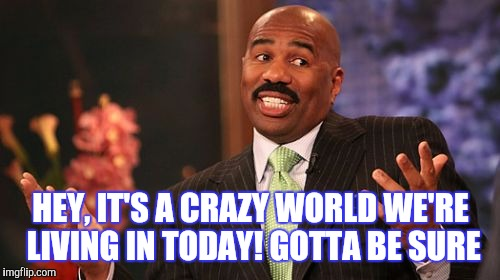 Steve Harvey Meme | HEY, IT'S A CRAZY WORLD WE'RE LIVING IN TODAY! GOTTA BE SURE | image tagged in memes,steve harvey | made w/ Imgflip meme maker