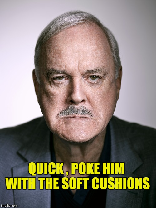 John Cleese | QUICK , POKE HIM WITH THE SOFT CUSHIONS | image tagged in john cleese | made w/ Imgflip meme maker