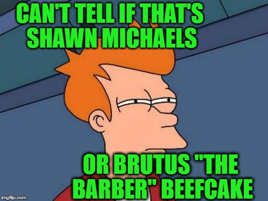 "Futurama Fry Meme | CAN'T TELL IF THAT'S SHAWN MICHAELS OR BRUTUS ""THE BARBER"" BEEFCAKE 