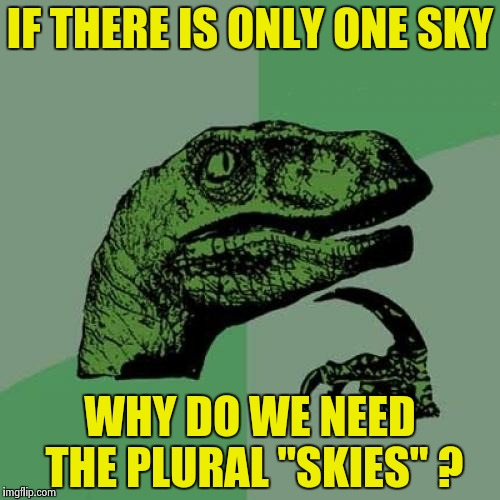 "Philosoraptor Meme | IF THERE IS ONLY ONE SKY WHY DO WE NEED THE PLURAL ""SKIES"" ? 