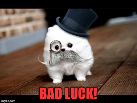 If You Ask Me (Dog) | BAD LUCK! | image tagged in if you ask me dog | made w/ Imgflip meme maker
