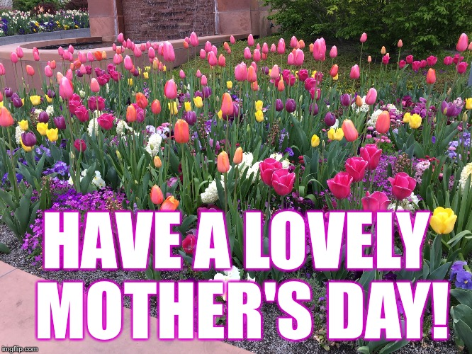 Happy Mother's Day to y'all! :-) | HAVE A LOVELY MOTHER'S DAY! | image tagged in mothers day | made w/ Imgflip meme maker