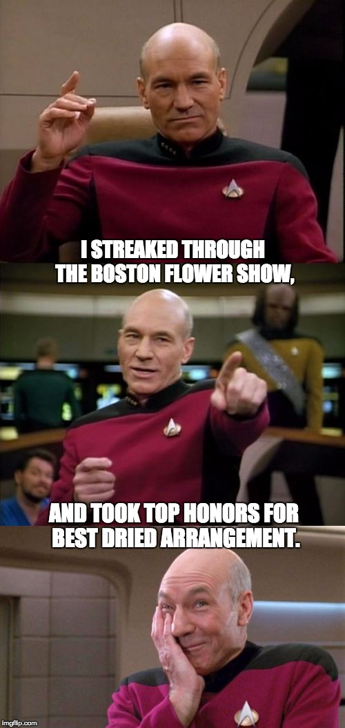 It was the Berries and Twigs category :-)  | I STREAKED THROUGH THE BOSTON FLOWER SHOW, AND TOOK TOP HONORS FOR BEST DRIED ARRANGEMENT. | image tagged in bad pun picard | made w/ Imgflip meme maker