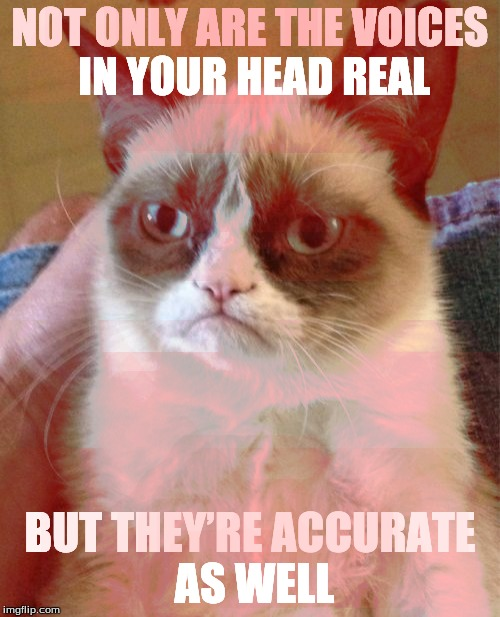 Grumpy Cat Meme | NOT ONLY ARE THE VOICES IN YOUR HEAD REAL BUT THEY'RE ACCURATE AS WELL | image tagged in memes,grumpy cat | made w/ Imgflip meme maker