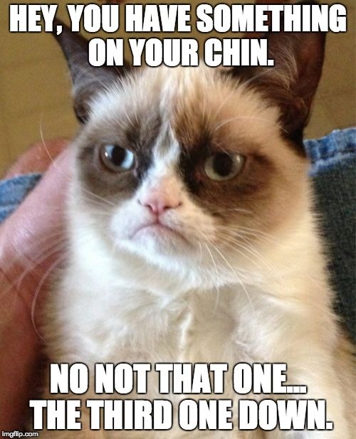 Grumpy Cat Meme | HEY, YOU HAVE SOMETHING ON YOUR CHIN. NO NOT THAT ONE... THE THIRD ONE DOWN. | image tagged in memes,grumpy cat | made w/ Imgflip meme maker