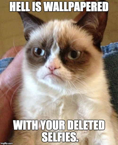 Grumpy Cat Meme | HELL IS WALLPAPERED WITH YOUR DELETED SELFIES. | image tagged in memes,grumpy cat | made w/ Imgflip meme maker