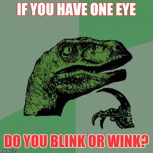 One eye | IF YOU HAVE ONE EYE DO YOU BLINK OR WINK? | image tagged in memes,philosoraptor | made w/ Imgflip meme maker