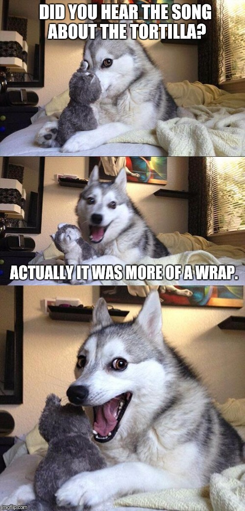 Bad Pun Dog Meme | DID YOU HEAR THE SONG ABOUT THE TORTILLA? ACTUALLY IT WAS MORE OF A WRAP. | image tagged in memes,bad pun dog | made w/ Imgflip meme maker