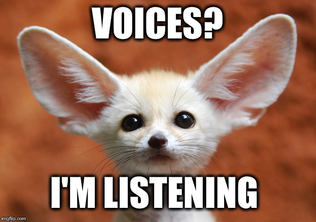 VOICES? I'M LISTENING | made w/ Imgflip meme maker