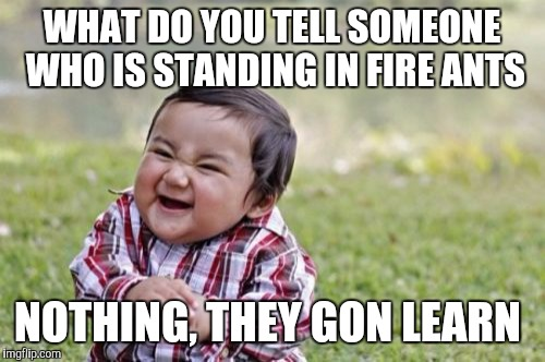 Evil Toddler Meme | WHAT DO YOU TELL SOMEONE WHO IS STANDING IN FIRE ANTS NOTHING, THEY GON LEARN | image tagged in memes,evil toddler | made w/ Imgflip meme maker