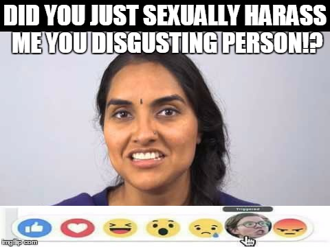 DID YOU JUST SEXUALLY HARASS ME YOU DISGUSTING PERSON!? | made w/ Imgflip meme maker