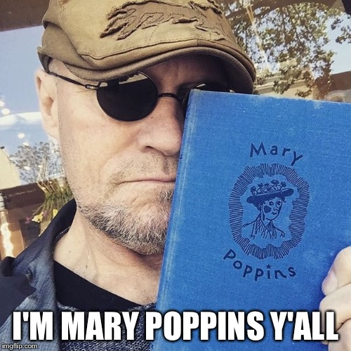 I'M MARY POPPINS Y'ALL | image tagged in mary poppins | made w/ Imgflip meme maker