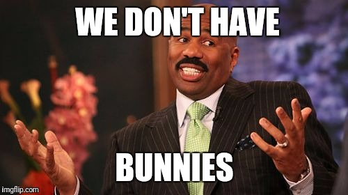 Steve Harvey Meme | WE DON'T HAVE BUNNIES | image tagged in memes,steve harvey | made w/ Imgflip meme maker