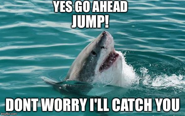Friendly Shark | YES GO AHEAD DONT WORRY I'LL CATCH YOU JUMP! | image tagged in friendly shark | made w/ Imgflip meme maker