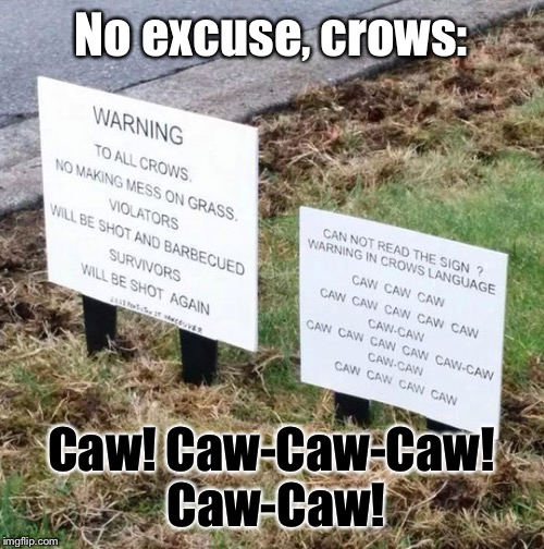 Caw! | No excuse, crows: Caw! Caw-Caw-Caw! Caw-Caw! | image tagged in memes,funny signs,animals | made w/ Imgflip meme maker