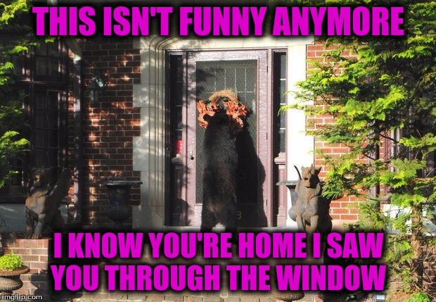 THIS ISN'T FUNNY ANYMORE I KNOW YOU'RE HOME I SAW YOU THROUGH THE WINDOW | made w/ Imgflip meme maker