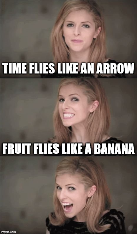 time isn't the only thing that flies... | TIME FLIES LIKE AN ARROW FRUIT FLIES LIKE A BANANA | image tagged in memes,bad pun anna kendrick | made w/ Imgflip meme maker