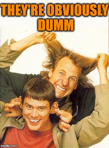 DUMB and dumber | THEY'RE OBVIOUSLY DUMM | image tagged in dumb and dumber | made w/ Imgflip meme maker