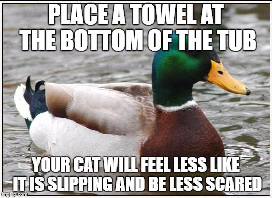 Actual Advice Mallard Meme | PLACE A TOWEL AT THE BOTTOM OF THE TUB YOUR CAT WILL FEEL LESS LIKE IT IS SLIPPING AND BE LESS SCARED | image tagged in memes,actual advice mallard,AdviceAnimals | made w/ Imgflip meme maker