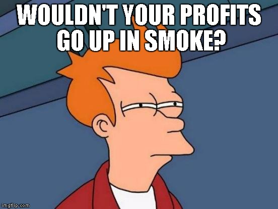Futurama Fry Meme | WOULDN'T YOUR PROFITS GO UP IN SMOKE? | image tagged in memes,futurama fry | made w/ Imgflip meme maker