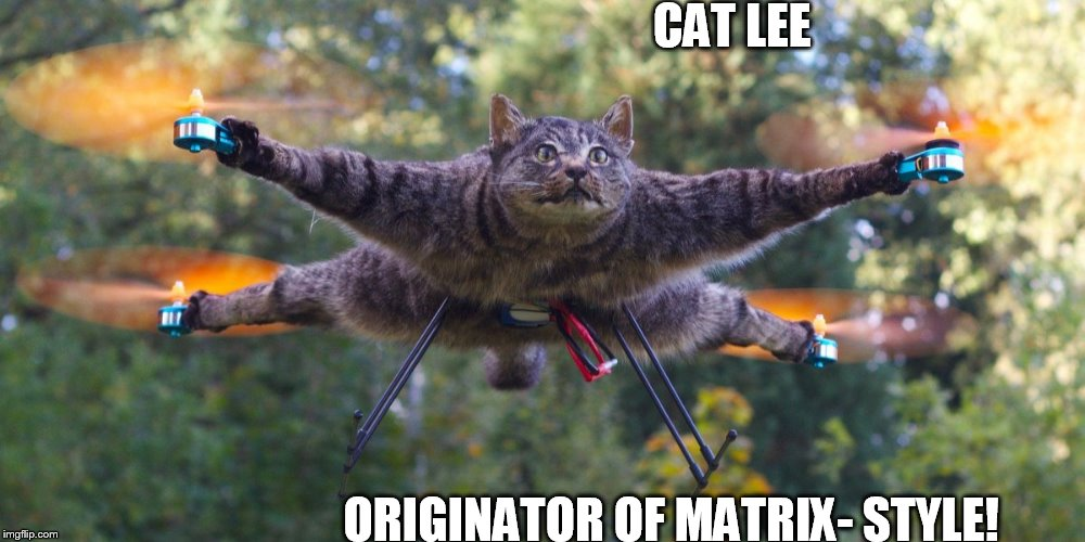 CAT LEE ORIGINATOR OF MATRIX- STYLE! | image tagged in cattwondo,matrix,style | made w/ Imgflip meme maker