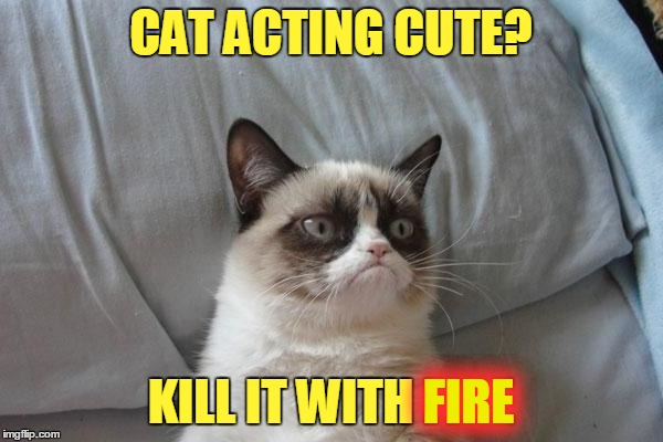 CAT ACTING CUTE? KILL IT WITH FIRE FIRE | made w/ Imgflip meme maker