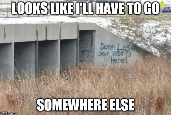 truth in graffiti  | LOOKS LIKE I'LL HAVE TO GO SOMEWHERE ELSE | image tagged in truth in graffiti | made w/ Imgflip meme maker