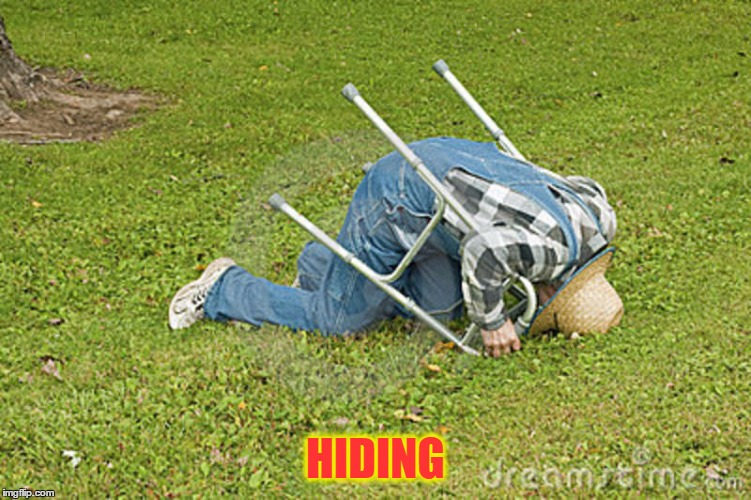 HIDING | made w/ Imgflip meme maker