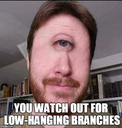 YOU WATCH OUT FOR LOW-HANGING BRANCHES | made w/ Imgflip meme maker